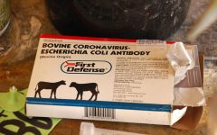 Coping With The Coronavirus