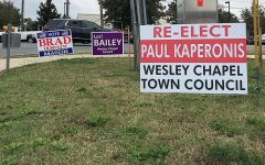 Signs were placed weeks before the Wesley Chapel election in front of a busy intersections to remind the residents of Wesley Chapel to vote.