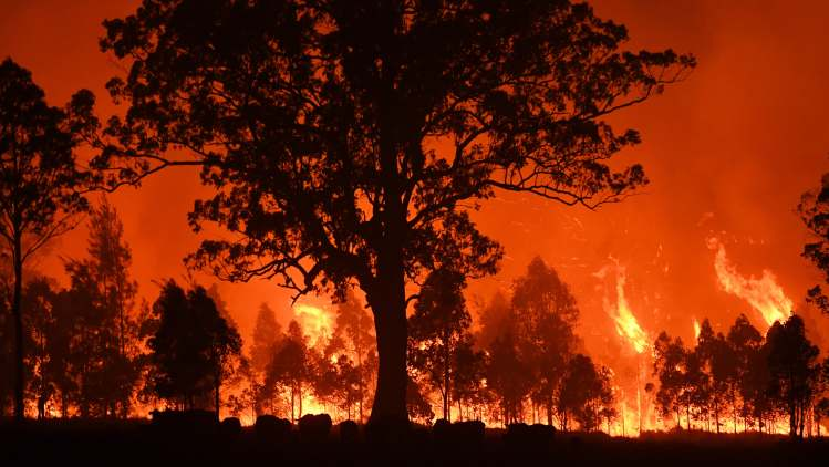 While+North+Carolina+has+quickly+turned+cold+this+month%2C+wildfires+have+taken+over+dry+Australian+landscapes.+Credit%3A+NICK+MOIR